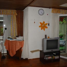 Wohnzimmer-bar-d-vorher